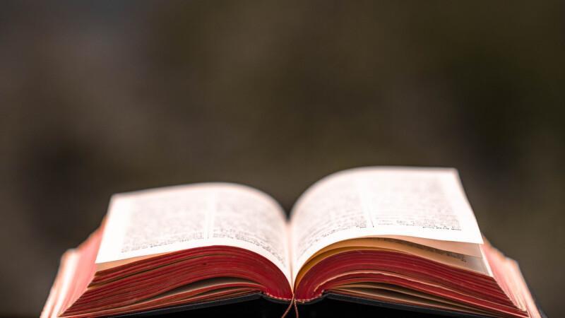 Bible & Sacred Texts main photo